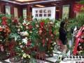 时尚环保 托斯卡纳集成墙面贵州毕节专卖店开业 (404播放)