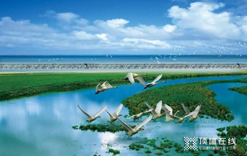 欧陆美居抗菌吊顶成功应用于鄱阳湖湿地平台建设项目_1