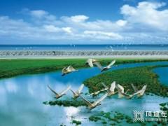 欧陆美居抗菌吊顶成功应用于鄱阳湖湿地平台建设项目