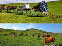 蒙古旅游 | 品格送我去旅游啦!